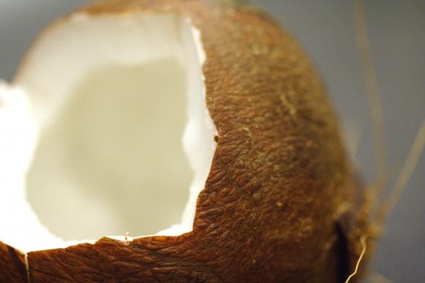 大人気!ココナッツオイルの効能と副作用ってどんなもの?
