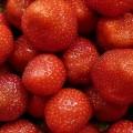 strawberry-51609_640