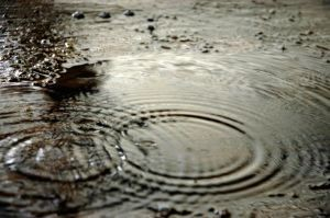 raindrops-in-puddle-901702-m